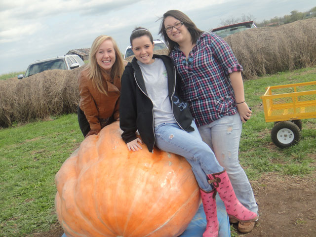 three girls leaning on a giant pumpkin